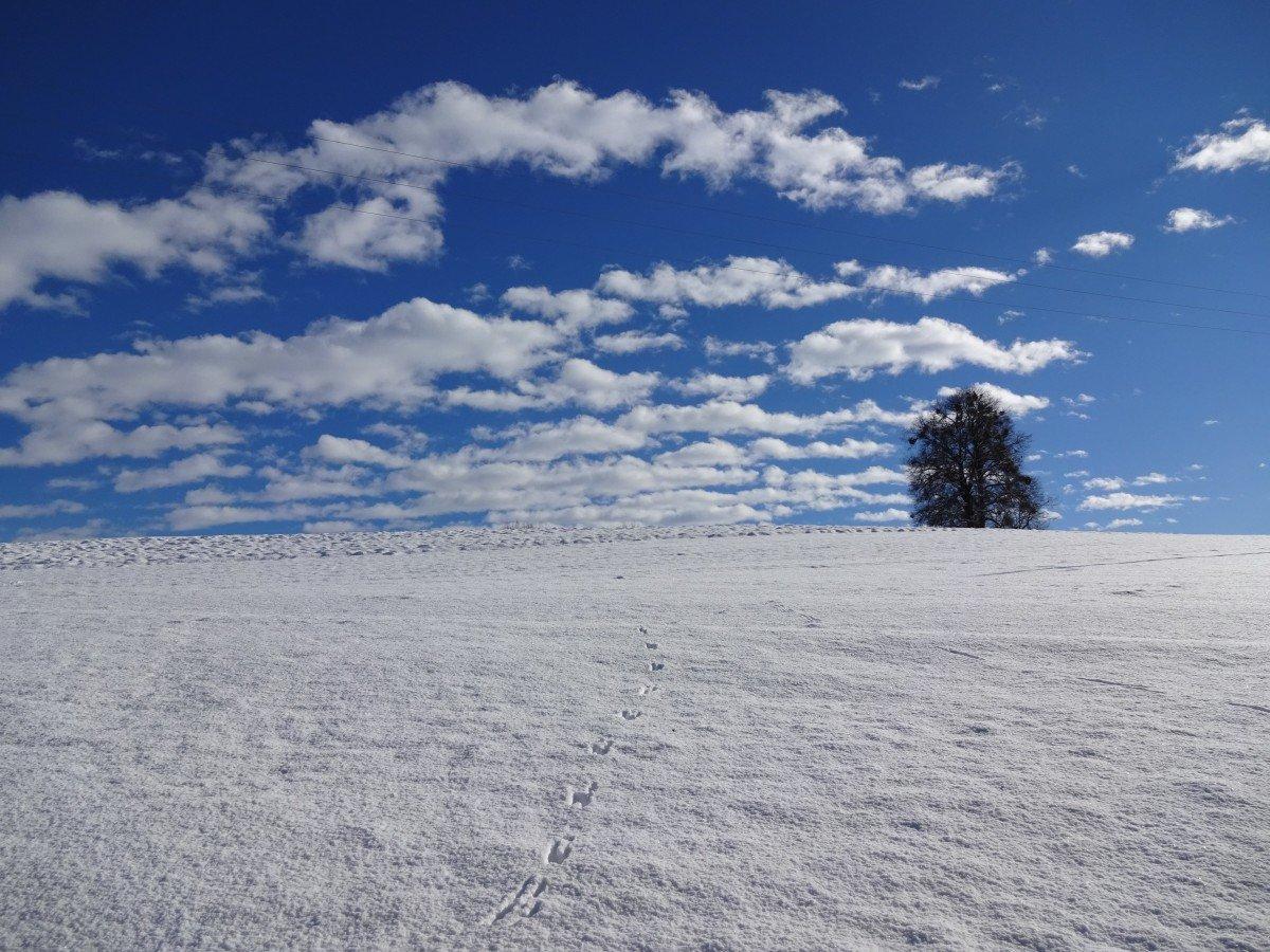 облака зимой в картинках чтобы все сразу