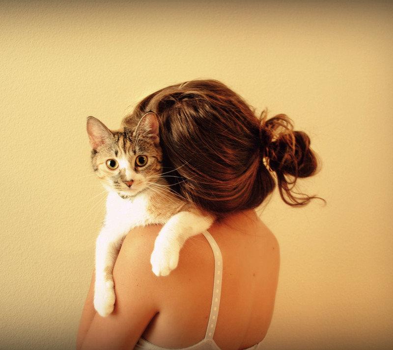 Девушки с котиком картинки