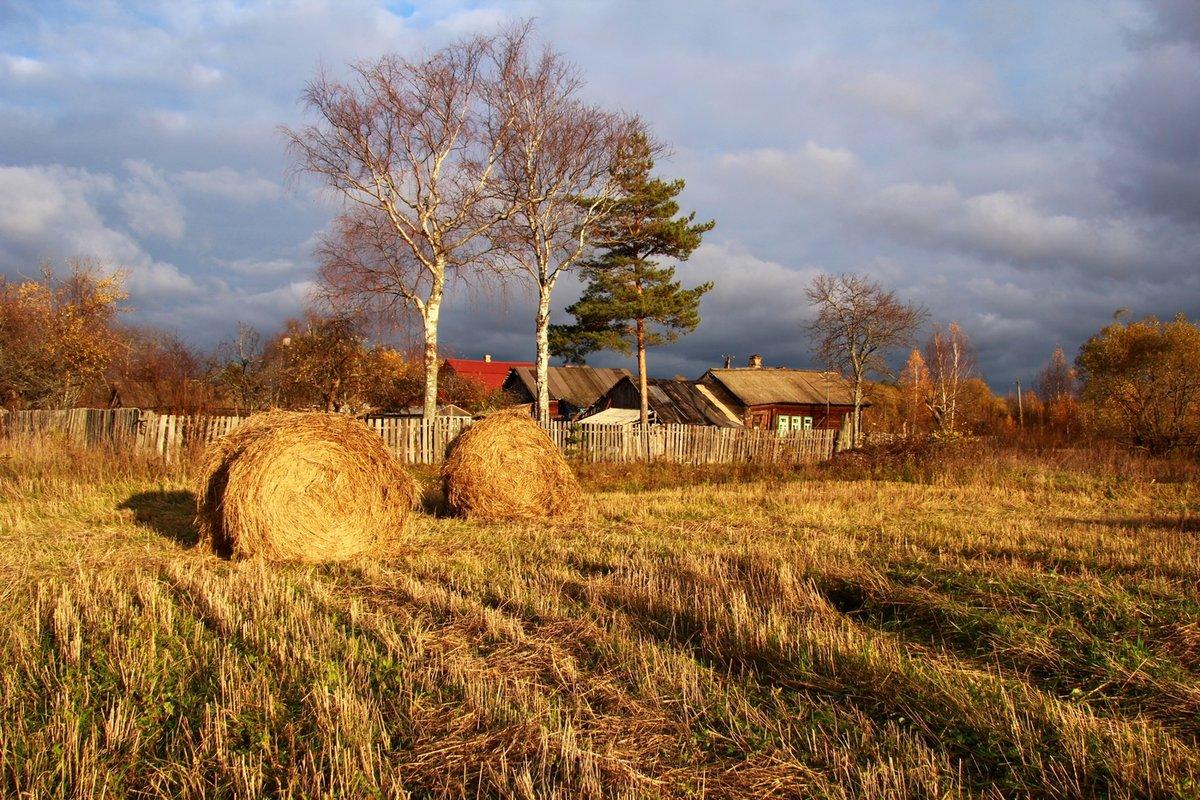 сельская осень картинки