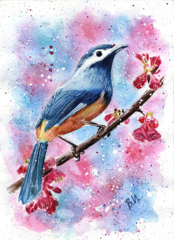 обучались птица на ветке рисунок красками матери