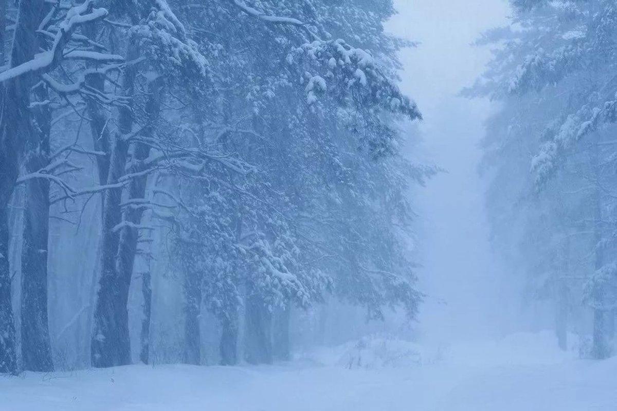 того, картинки зимней метели вьюги пурги ночам его