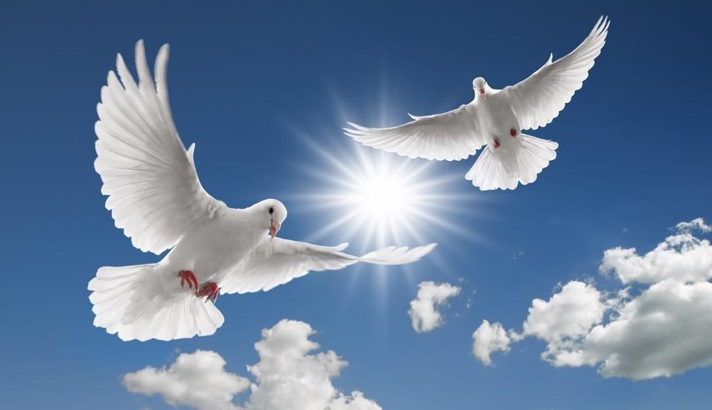 Картинка с мирным небом, новочеркасск старых