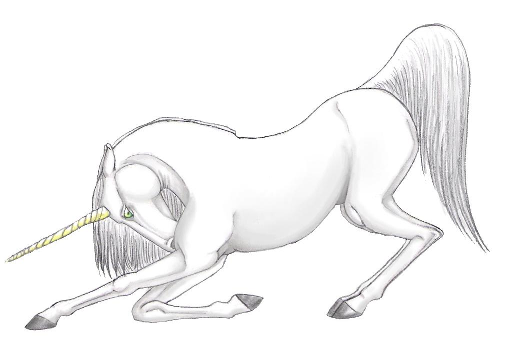 Unicorn Online Coloring Pages For Kids And For Adults Co Card