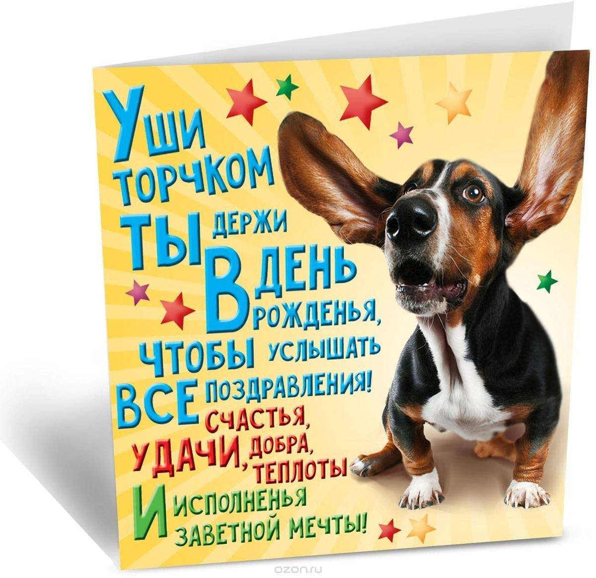 поздравление собак в стихах наши