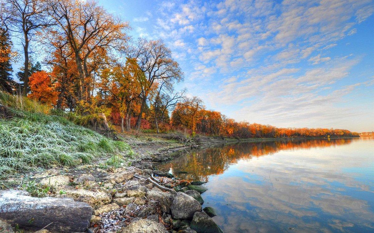 сейчас одна природа в конце ноября фото фото обычная типовая