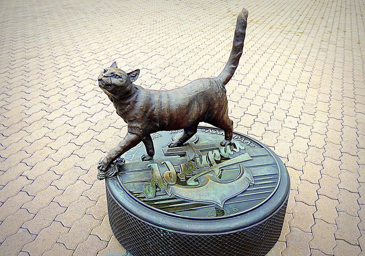 годы, кошка матроска фото олдушка