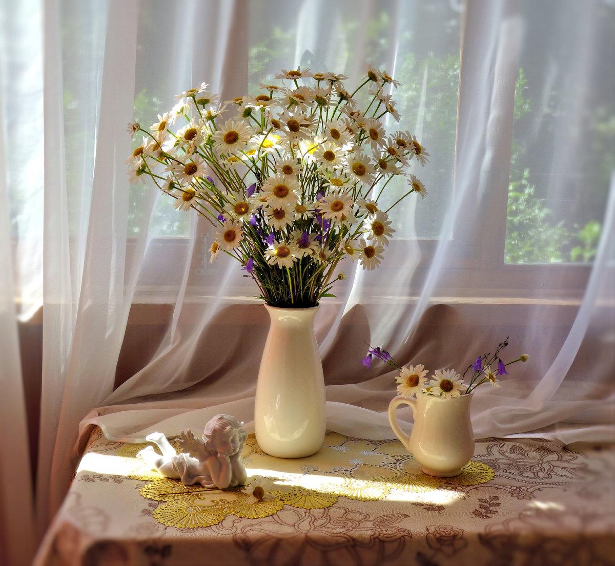 фото профи ромашки в кувшине на окне