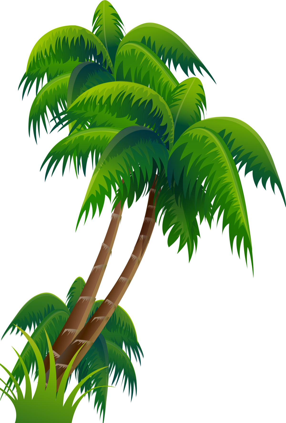 картинка пальма без фона нанесении краски