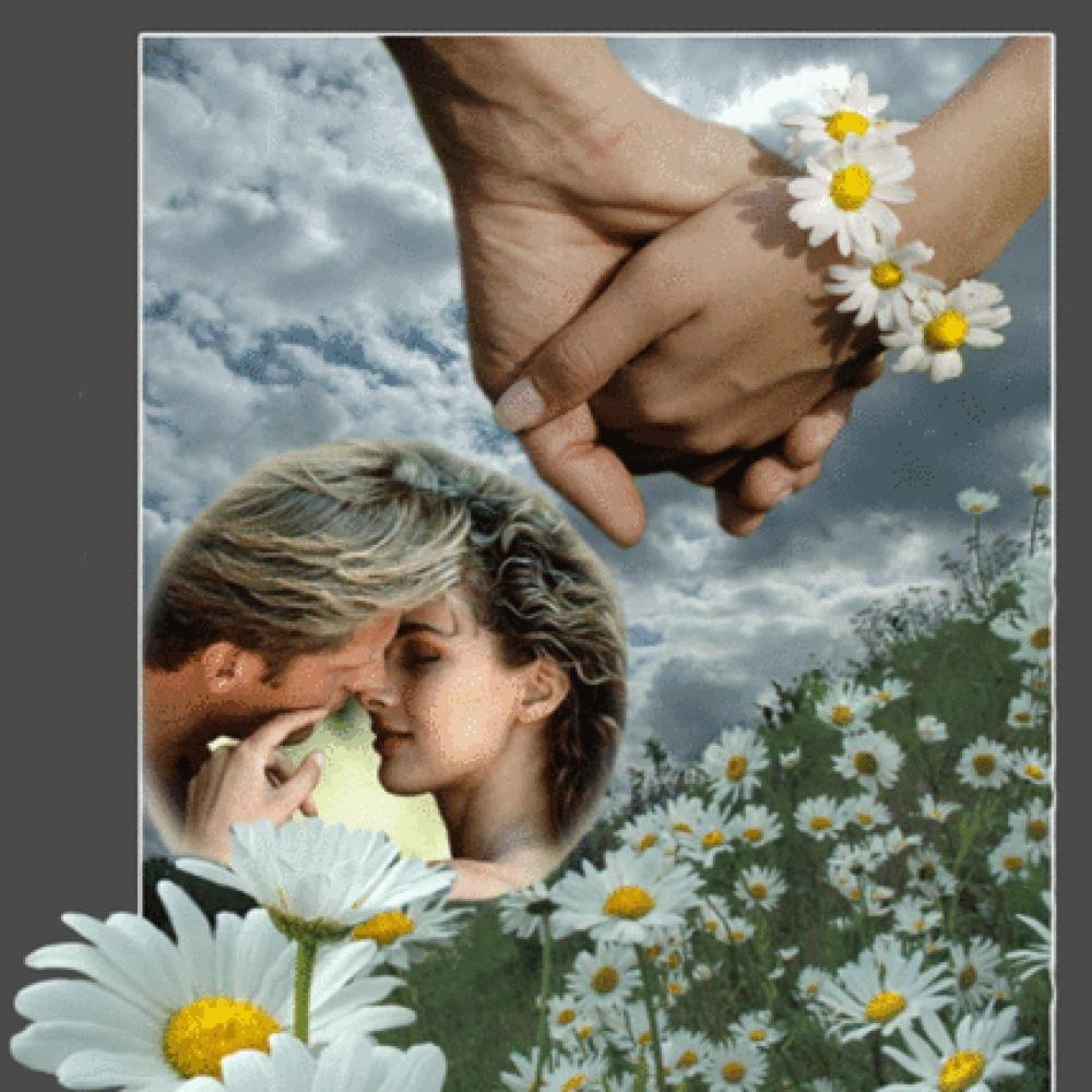 Открытки любовь в поле