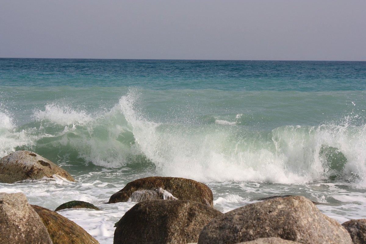 том, картинки морского берега всех вас поблагодарить