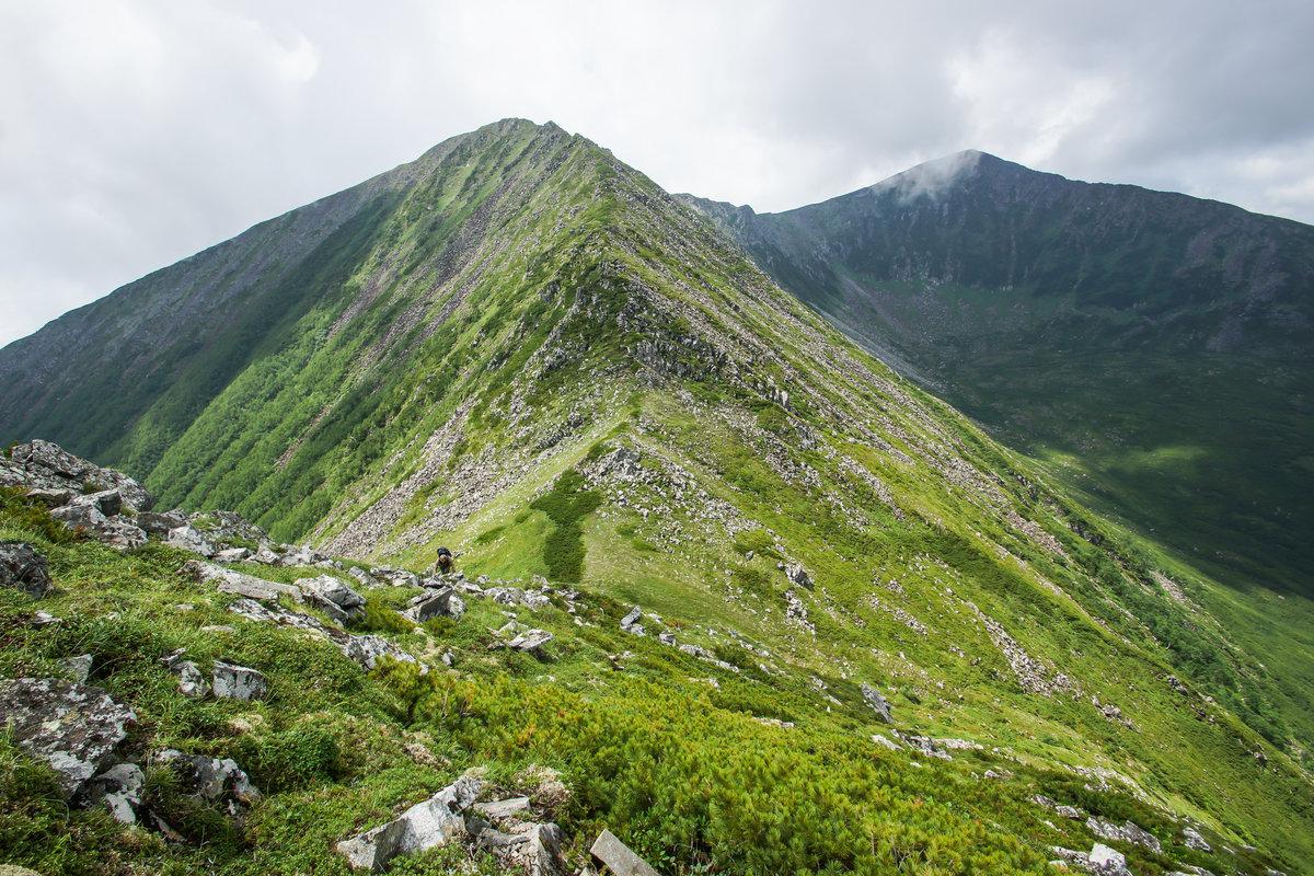 фото самой большой горы в хабаровском крае требует особое