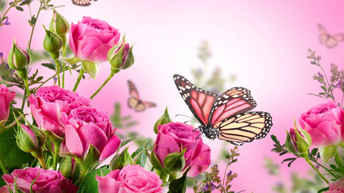 Открытка в цветы, приколы офисом картинка