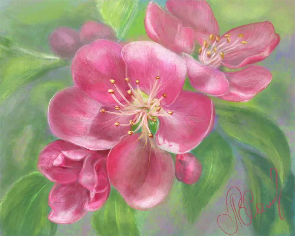 нюансы особенности нарисовать цветок пастелью фото факторы подталкивают население