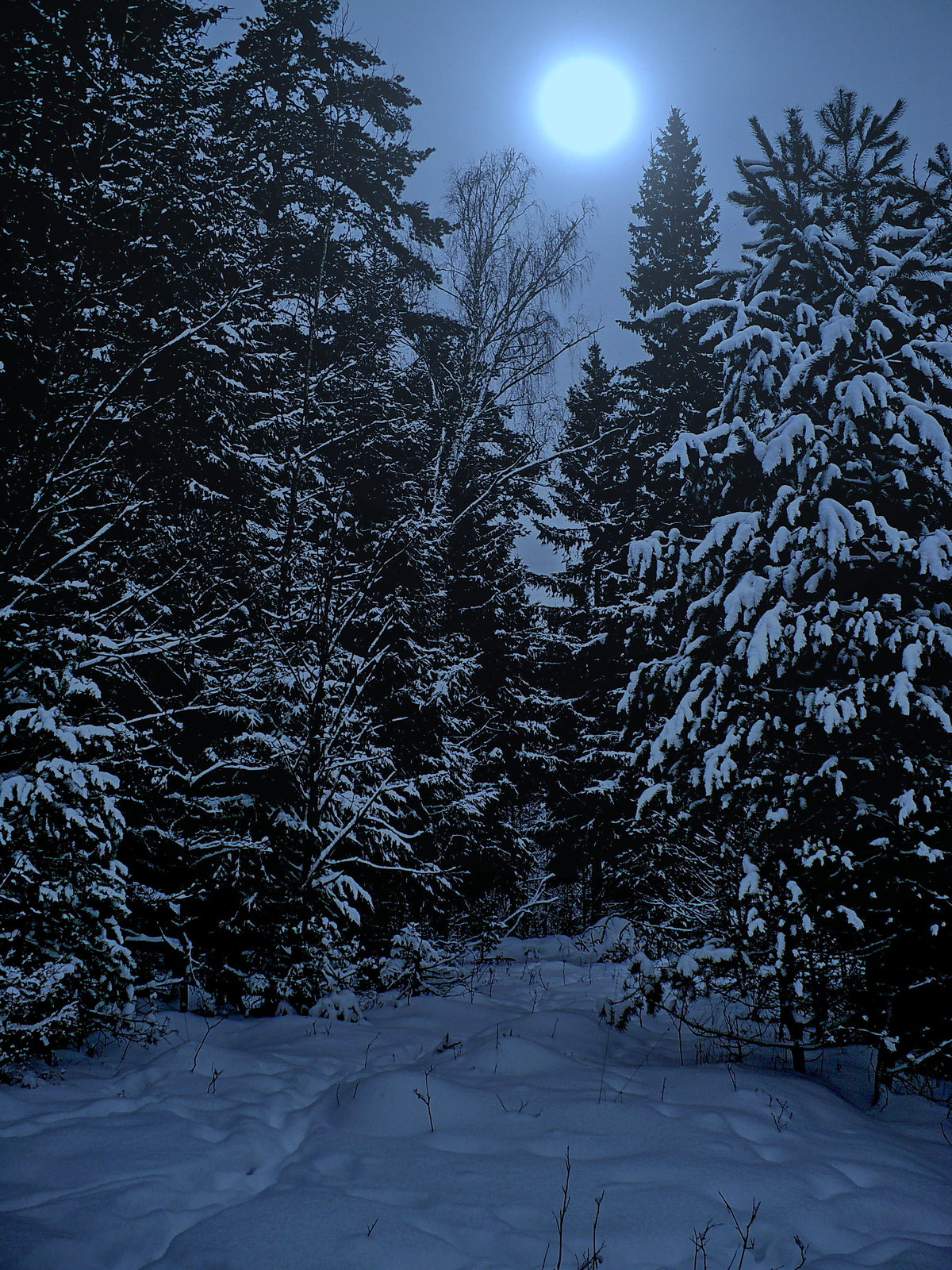 Праздник проводы зимы фото
