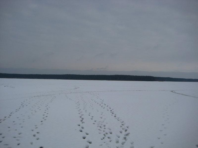 След в след #зима #пейзаж #россия #селигер