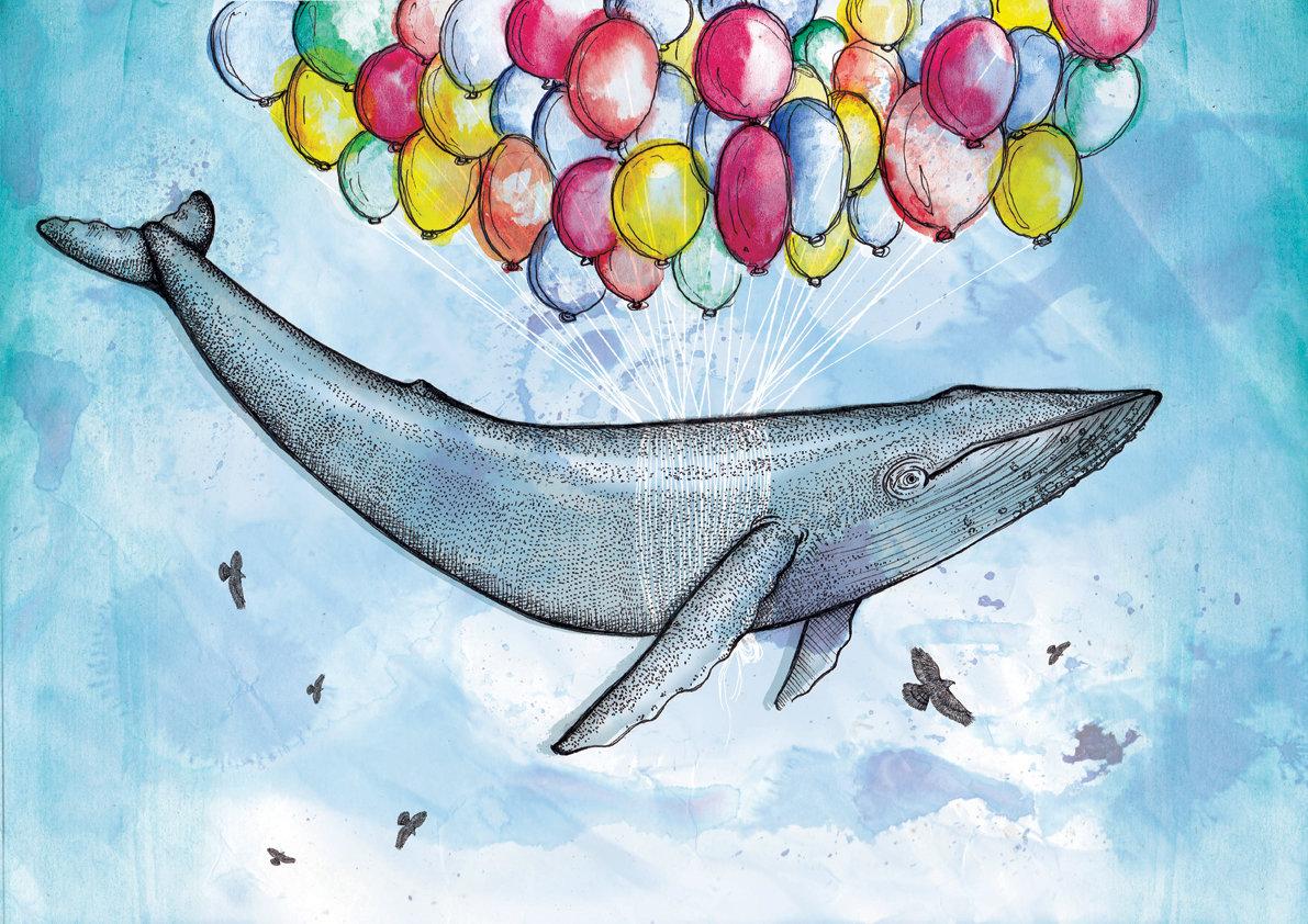 размером картинки и рисунки китов изгибы