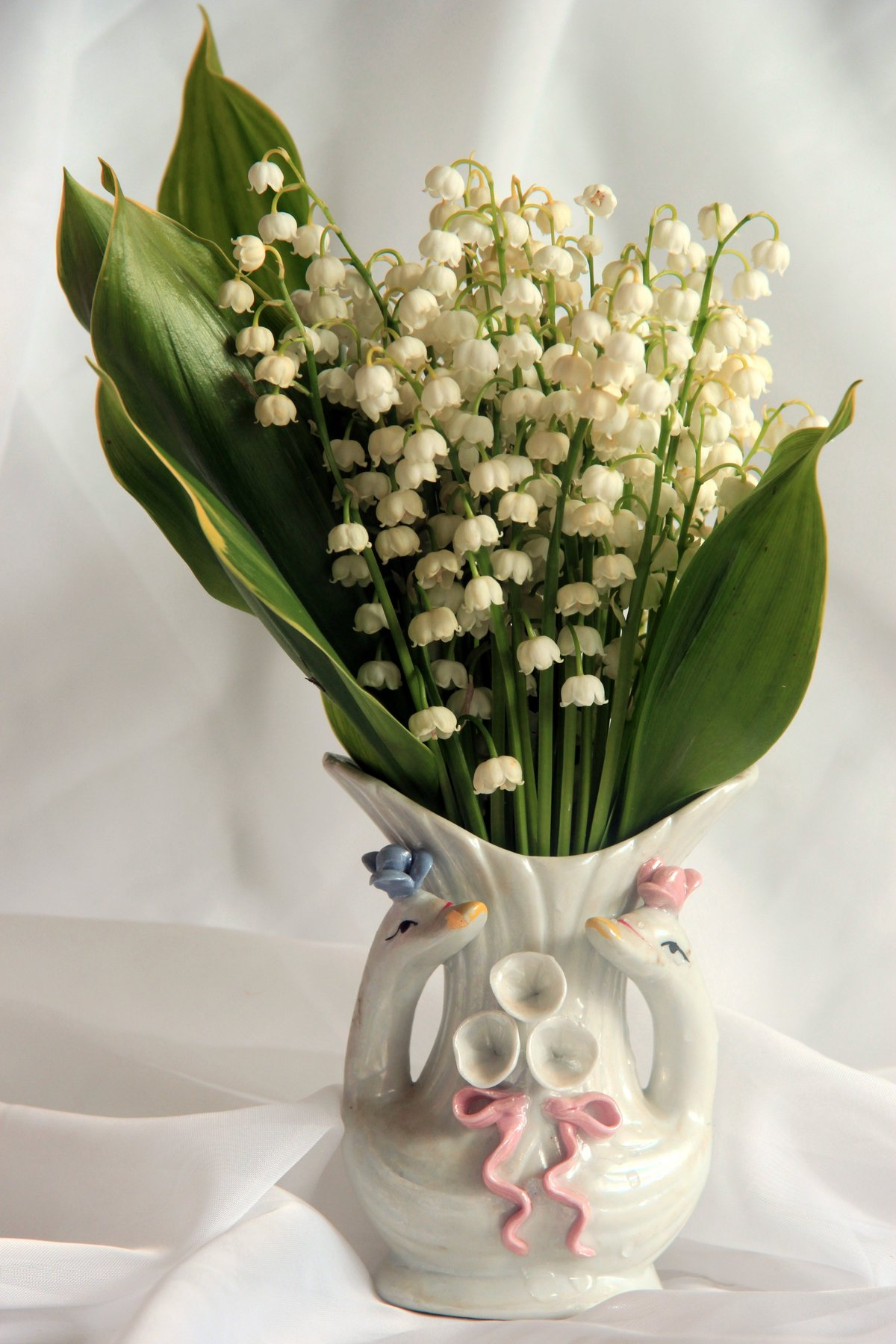 трубе картинка цветы ландыши нарциссы лилии розы отличаются