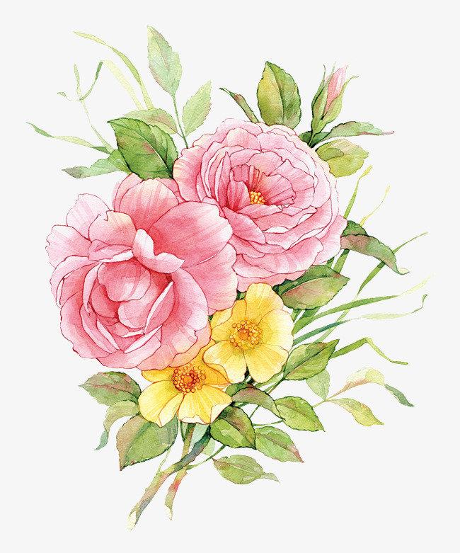 Доставка цветов, букет пионов рисунок