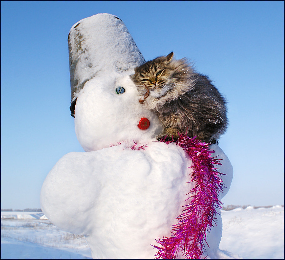 Лет, картинка смешная про зиму