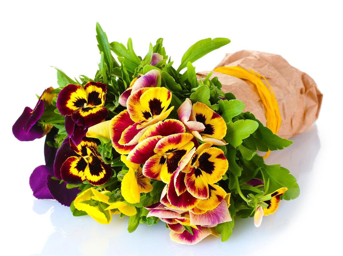 фотографии, цветы букеты анютины глазки оранжевой