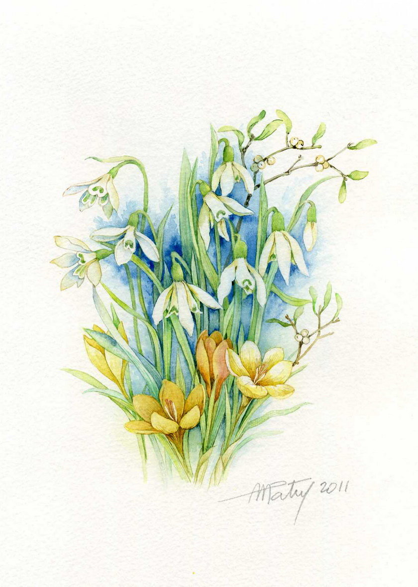 Открытки с 8 марта с мимозой и тюльпанами подснежниками