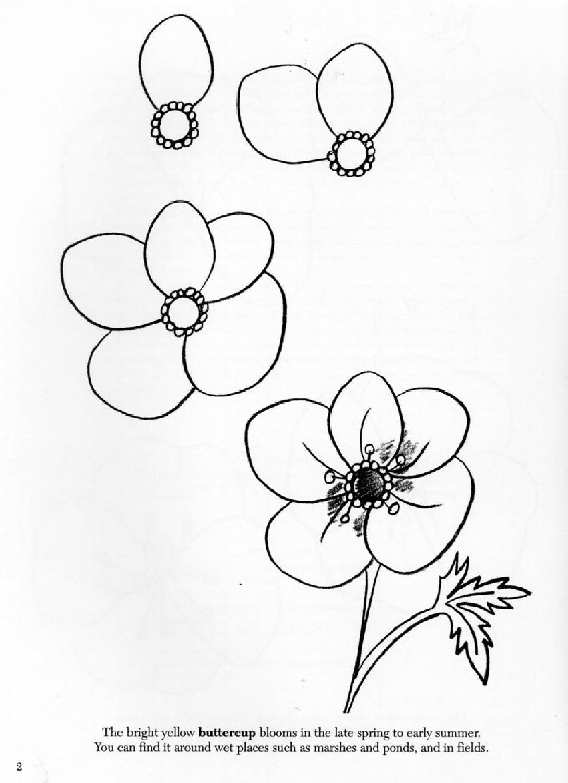 Мая, картинки нарисовать цветы легко