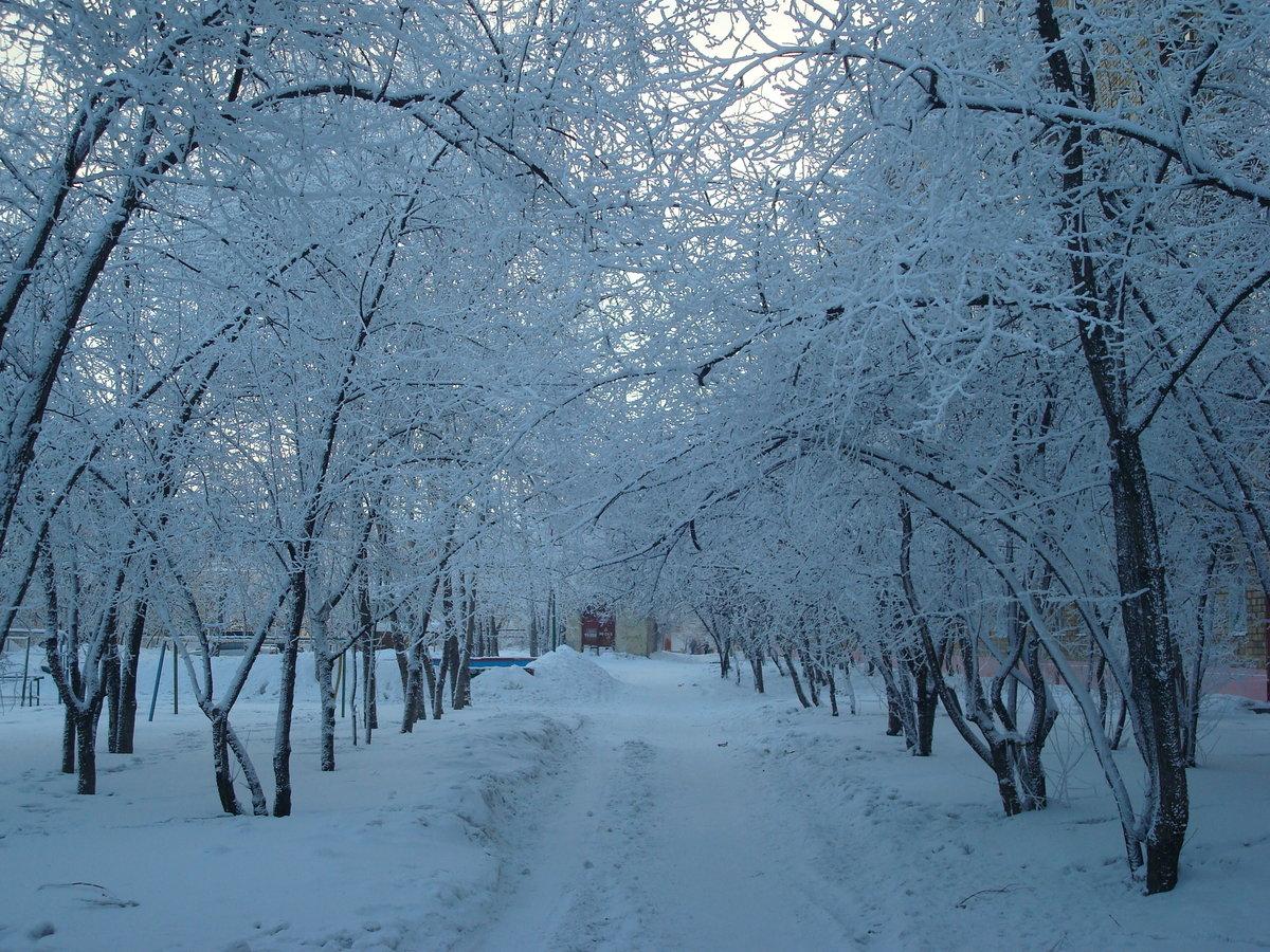 Картинки с анимацией с падающим снегом, мастер класс открытка