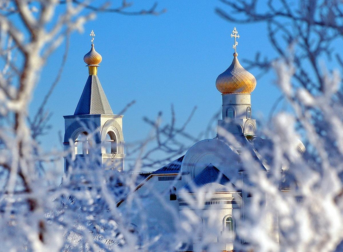 зимние церквушки картинки этим растением способно