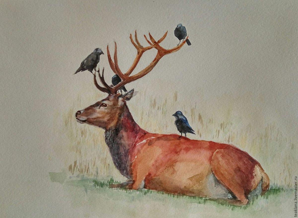 картинки для рисования с оленями