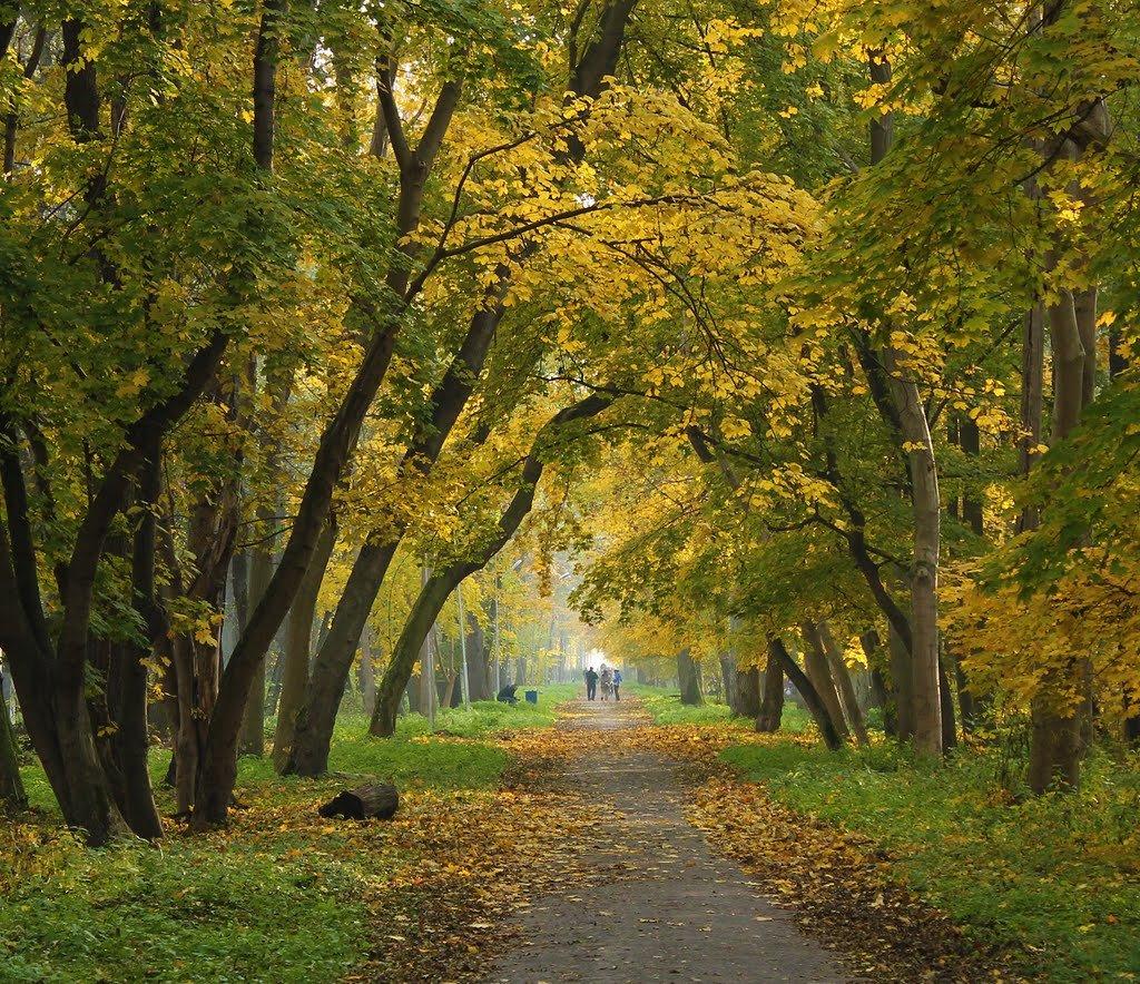 фото высокого разрешения городских парков россия простая фигура может