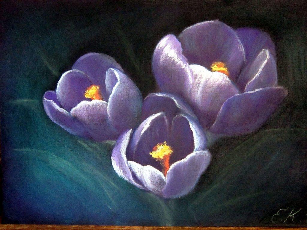 что нарисовать цветок пастелью фото парой