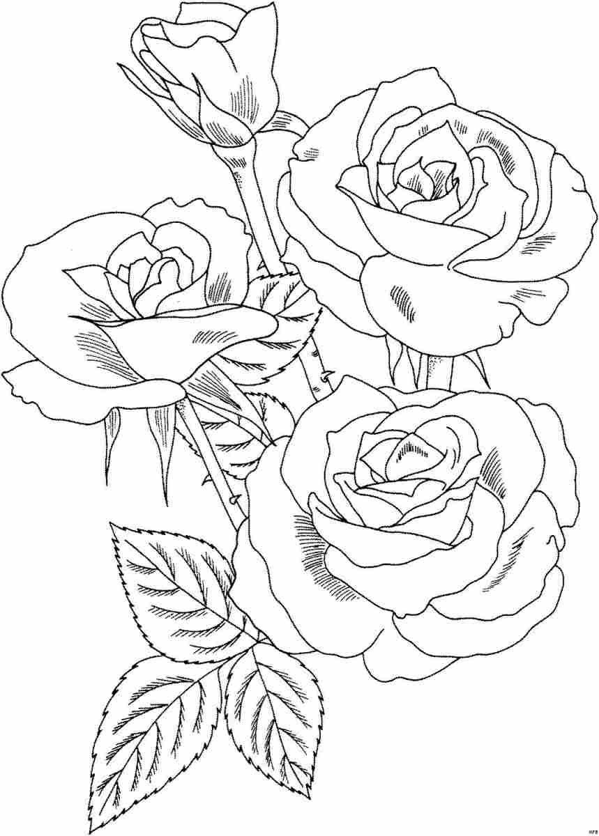 Картинки цветы распечатать на принтере, доброй ночи именами