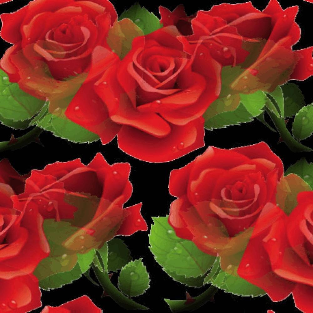 Цветы в анимации картинки розы царские