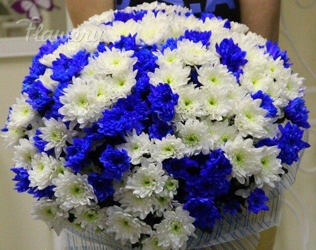 Мерседес бенц синий фото отец