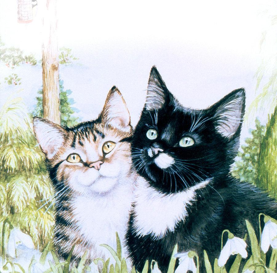 Надписями, два кота картинки рисованные