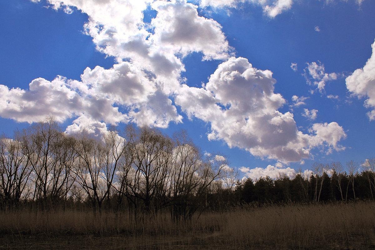Топовые картинки неба для строительства