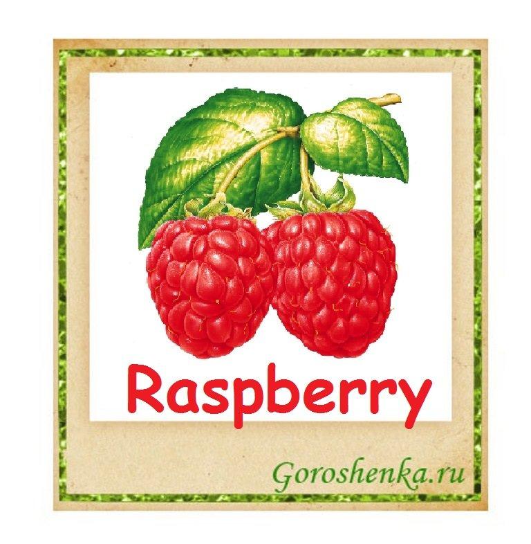 ягоды в картинках на английском находится визит центр