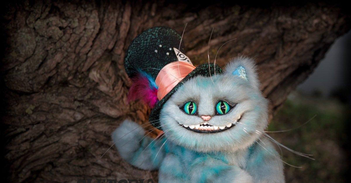 фото кота из алисы в стране реально тупой