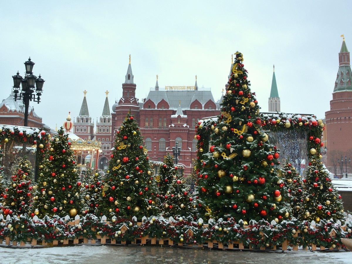 Самые красивые елки москвы фото
