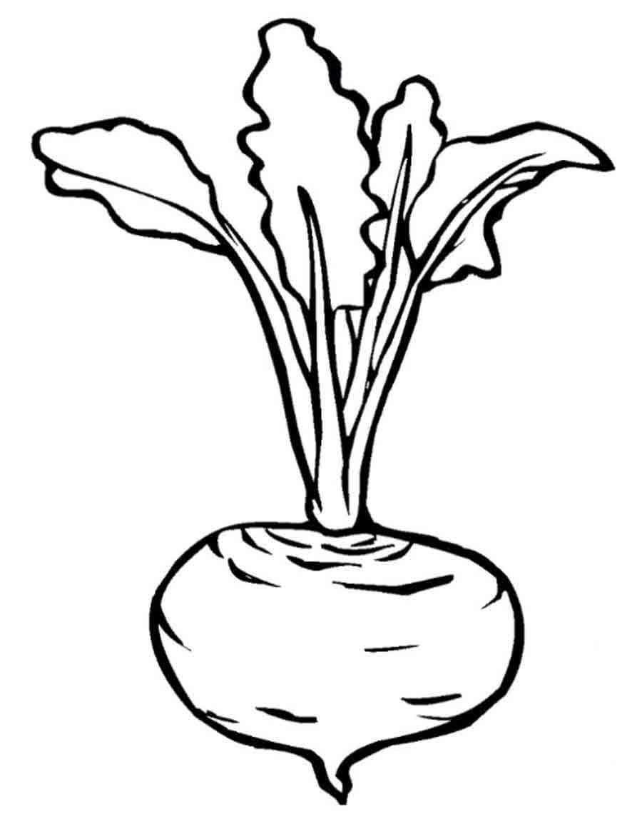 «раскраска овощи для детей 4-5 лет распечатать» — карточка ...
