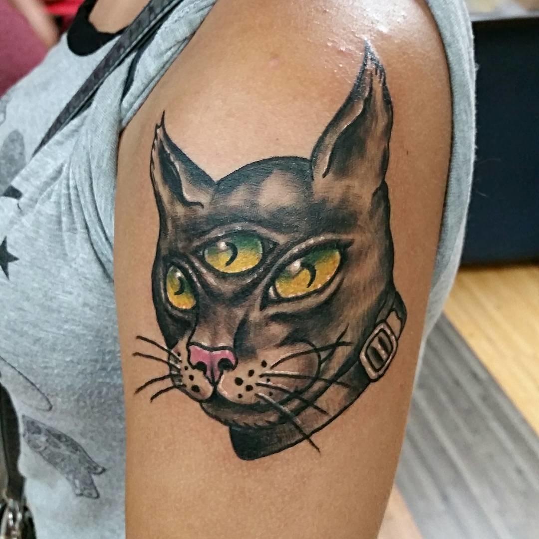 фото картинки кошек для тату удивительно ароматные красивые