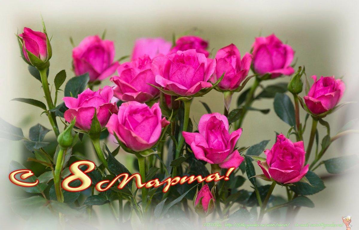 Видео открытки с 8 марта цветы