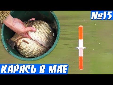 Рыбалка на осеннего карася видеоhttps://bit.ly/2GiWsGuВидео ...