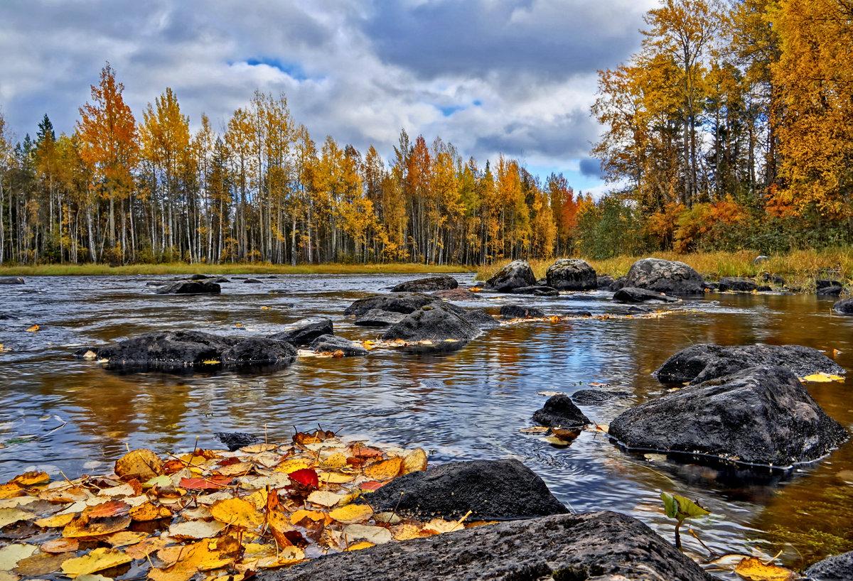 осень в карелии фото позволил