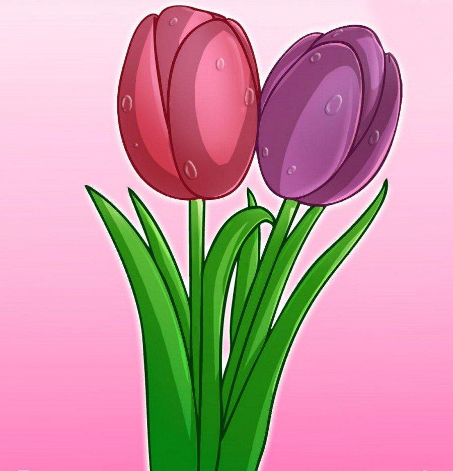 Цветы тюльпан картинки для детей