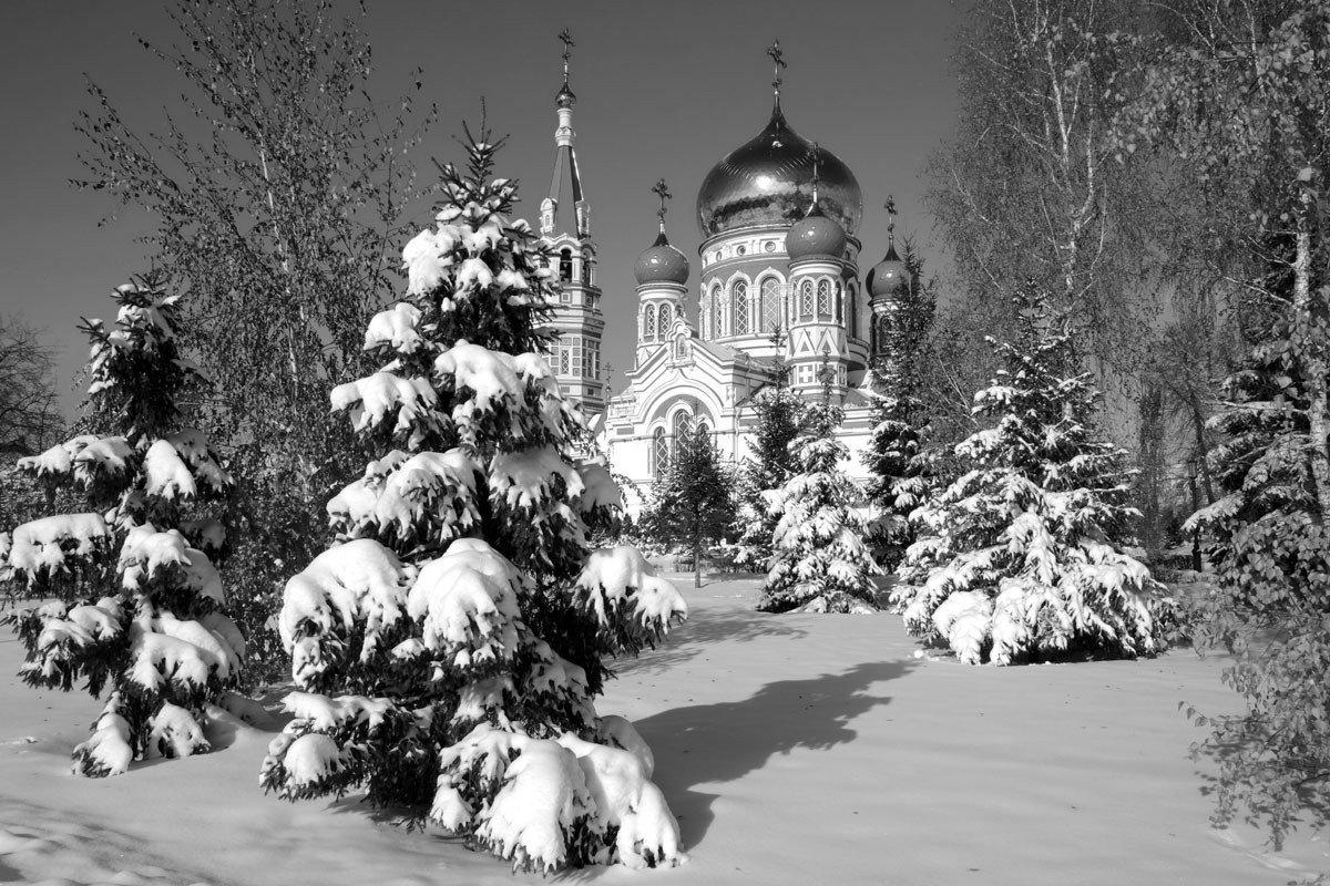 пеллетные горелки красивые фото омска зимой него множество