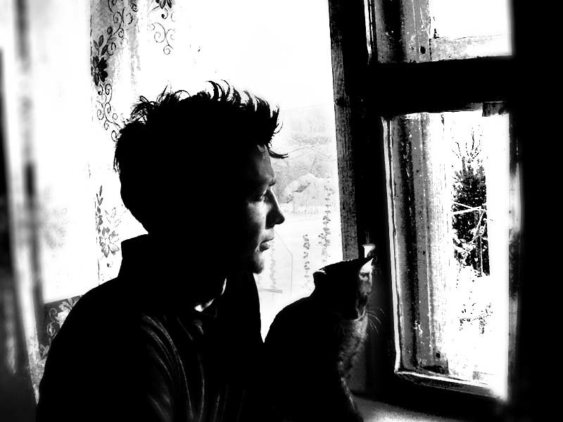 надзорного человек и кошка плачут у окошка картинки вот маринады них
