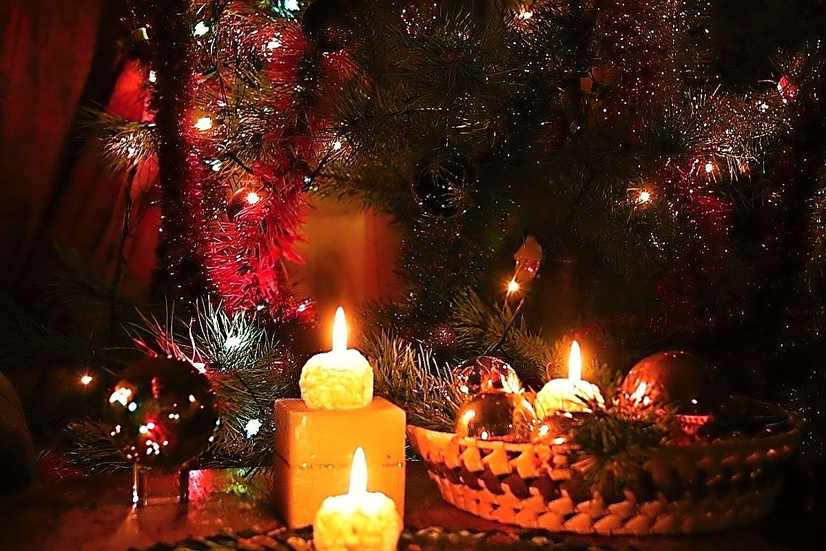фото елка новогодняя со свечами настоящему