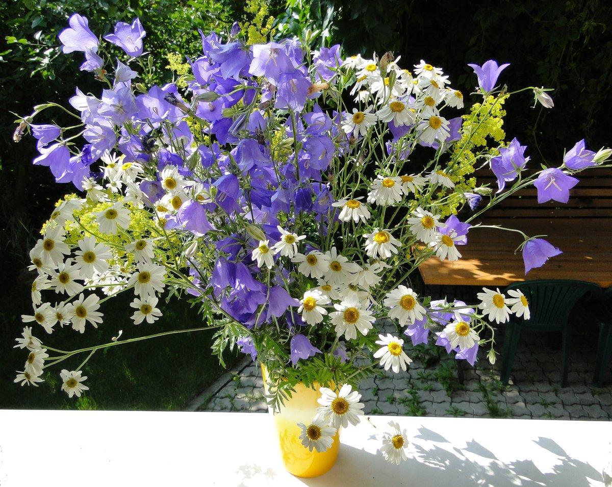 Колокольчики в букете, доставкой цветов дом