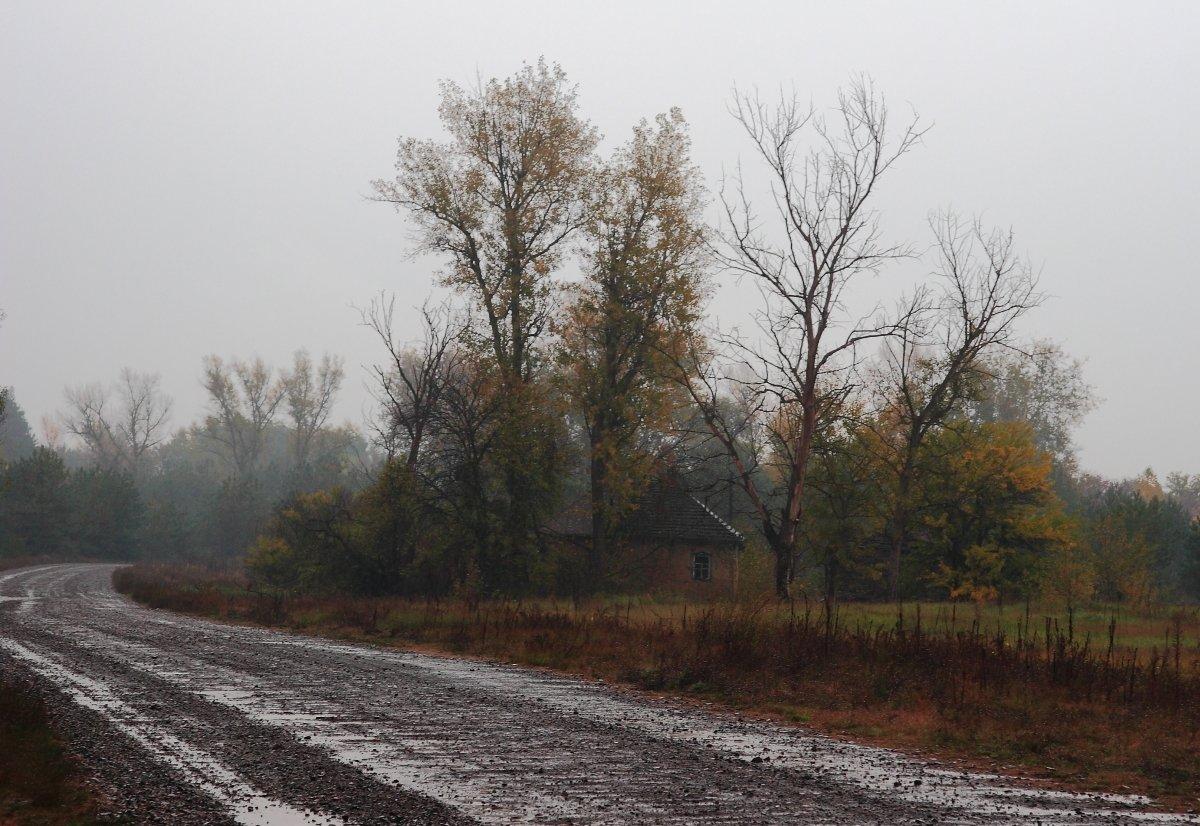 фотографии дождливая осень в деревне вещь